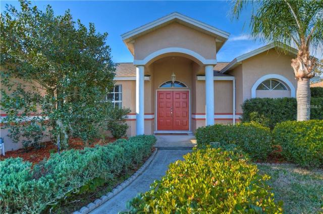 22912 Sterling Manor Loop, Lutz, FL 33549 (MLS #T3156483) :: Andrew Cherry & Company