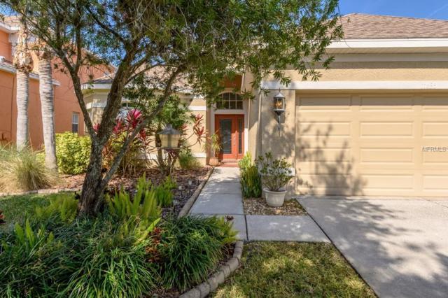 11635 Greensleeve Avenue, Tampa, FL 33626 (MLS #T3156484) :: Andrew Cherry & Company