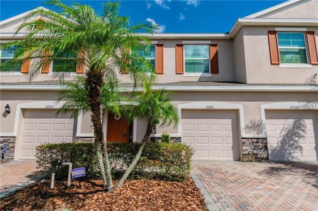 26915 Juniper Bay Drive, Wesley Chapel, FL 33544 (MLS #T3156512) :: Team Bohannon Keller Williams, Tampa Properties
