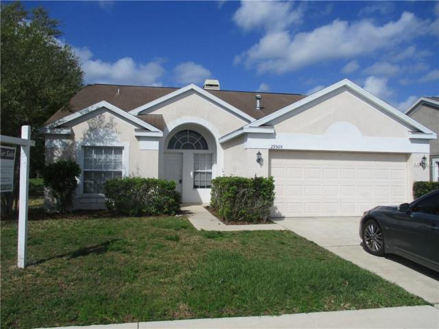 29505 Morningmist Drive, Wesley Chapel, FL 33543 (MLS #T3156604) :: Cartwright Realty