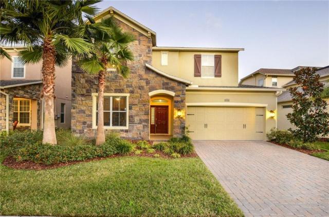 4544 Vermillion Sky Drive, Wesley Chapel, FL 33544 (MLS #T3156611) :: Team Bohannon Keller Williams, Tampa Properties