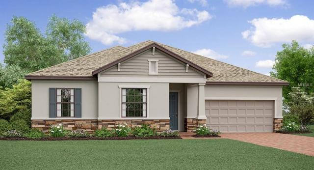 9817 Sage Creek Drive, Ruskin, FL 33573 (MLS #T3156679) :: The Duncan Duo Team