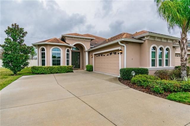 20841 Amanda Oak Court, Land O Lakes, FL 34638 (MLS #T3156768) :: Griffin Group