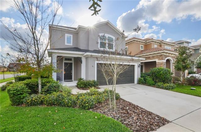 14127 Whisper Bench Way, Lithia, FL 33547 (MLS #T3156817) :: Dalton Wade Real Estate Group