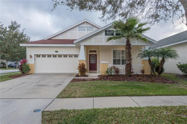 18202 Parasol Way, Lutz, FL 33558 (MLS #T3156918) :: Team Bohannon Keller Williams, Tampa Properties