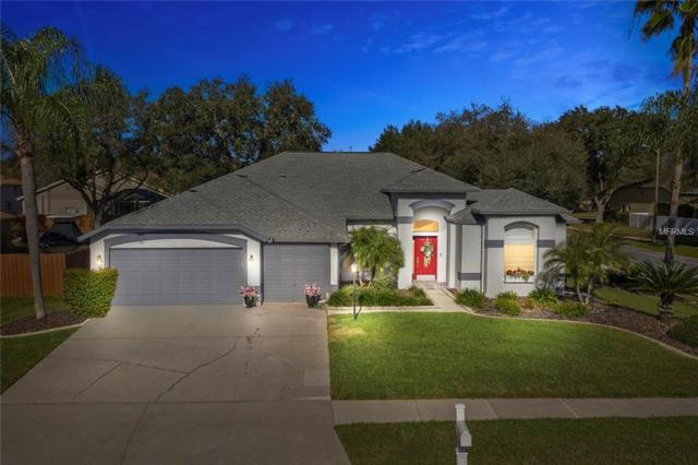 4611 Gentrice Drive, Valrico, FL 33596 (MLS #T3156956) :: Griffin Group