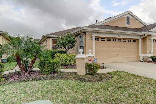 9823 Bridgeton Drive, Tampa, FL 33626 (MLS #T3156977) :: Griffin Group