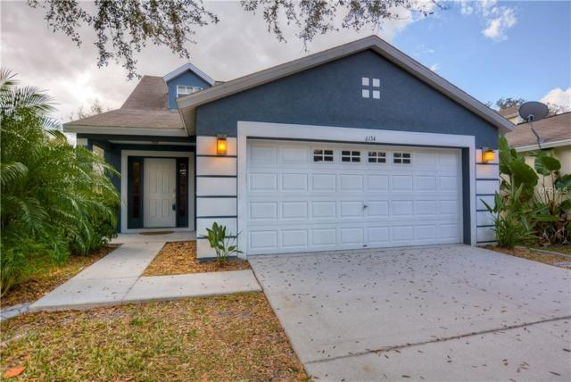 6134 Skylarkcrest Drive, Lithia, FL 33547 (MLS #T3157005) :: The Brenda Wade Team