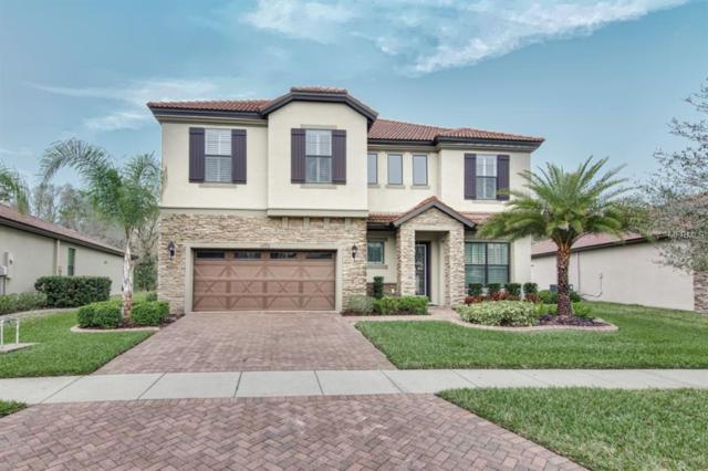 2581 Calvano Drive, Land O Lakes, FL 34639 (MLS #T3157006) :: Griffin Group