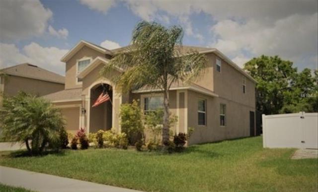 2313 Dakota Rock Drive, Ruskin, FL 33570 (MLS #T3157072) :: Team Bohannon Keller Williams, Tampa Properties