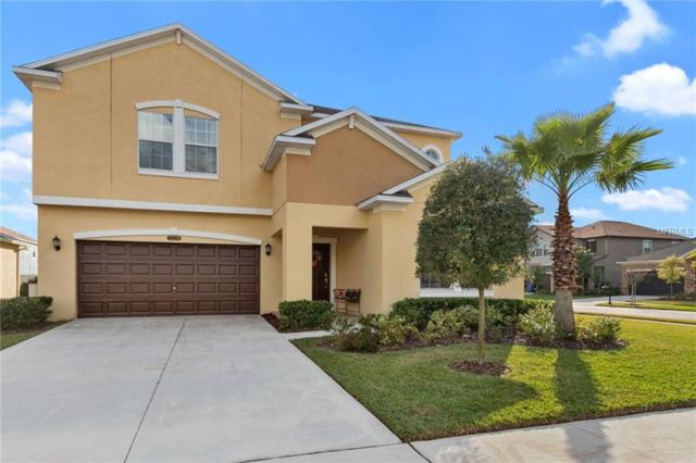 21428 Billowy Jaunt Drive, Land O Lakes, FL 34637 (MLS #T3157144) :: Cartwright Realty