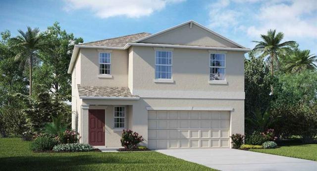 4904 Golden Fig Lane, Wimauma, FL 33598 (MLS #T3157214) :: Dalton Wade Real Estate Group
