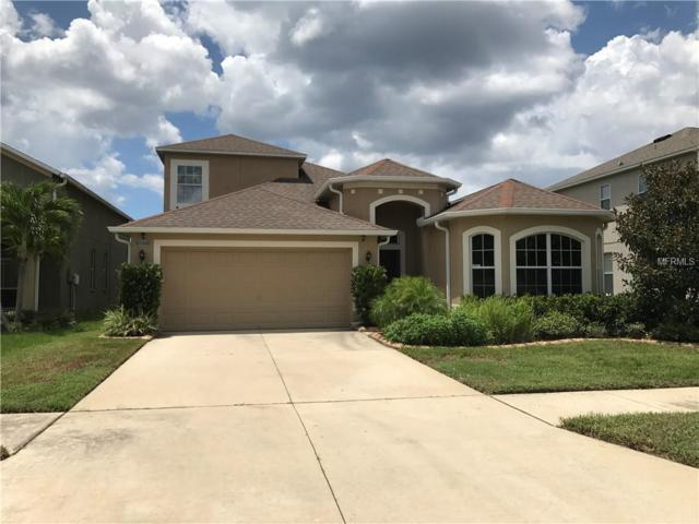 7511 Tangle Bend Drive, Gibsonton, FL 33534 (MLS #T3157234) :: Dalton Wade Real Estate Group