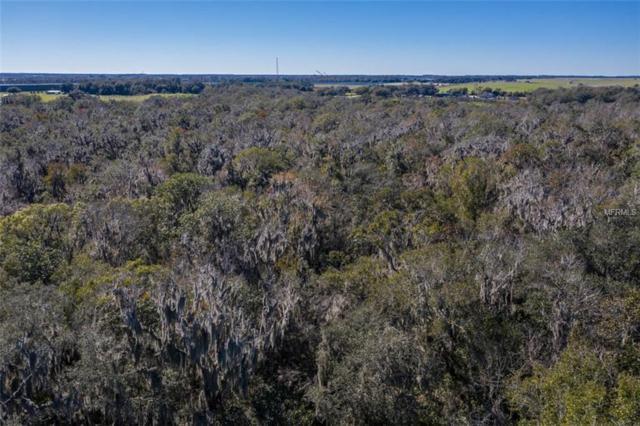 15210 Rough Diamond Ranch Road, Lithia, FL 33547 (MLS #T3157260) :: Dalton Wade Real Estate Group
