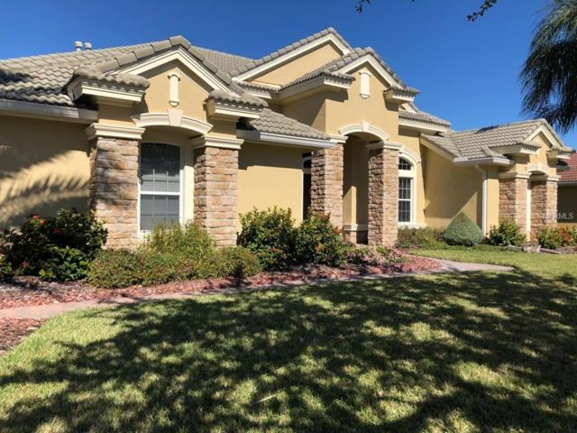 11901 Royce Waterford Circle, Tampa, FL 33626 (MLS #T3157276) :: Andrew Cherry & Company