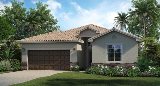 10124 Marbella Drive, Bradenton, FL 34211 (MLS #T3157280) :: Sarasota Gulf Coast Realtors