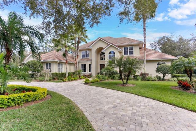 15703 Cochester Road, Tampa, FL 33647 (MLS #T3157296) :: Dalton Wade Real Estate Group