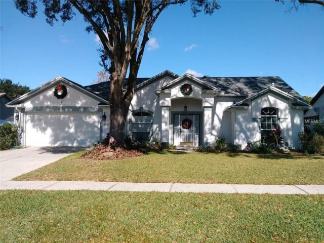 Address Not Published, Valrico, FL 33596 (MLS #T3157307) :: Team Bohannon Keller Williams, Tampa Properties