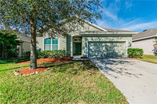 7653 Atwood Drive, Wesley Chapel, FL 33545 (MLS #T3157316) :: Cartwright Realty