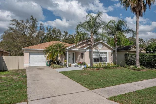 421 Benson Street, Valrico, FL 33594 (MLS #T3157331) :: Team Bohannon Keller Williams, Tampa Properties