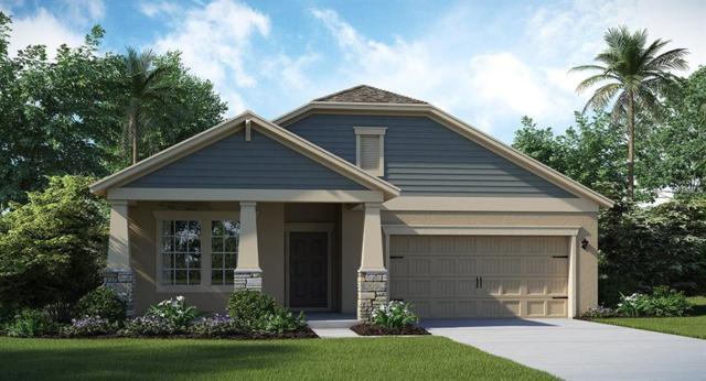 11156 Cyrilla Woods Drive, Orlando, FL 32832 (MLS #T3157385) :: Godwin Realty Group