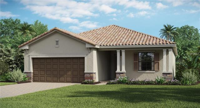 4622 Royal Dornoch Circle, Bradenton, FL 34211 (MLS #T3157390) :: Team Suzy Kolaz
