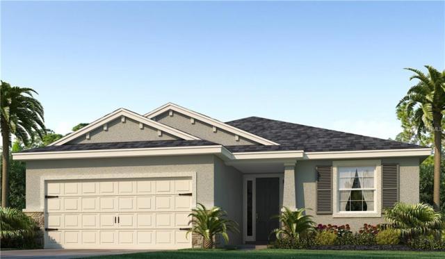 1050 Montgomery Bell Road, Wesley Chapel, FL 33543 (MLS #T3157394) :: Cartwright Realty