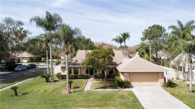 16602 Round Oak Drive, Tampa, FL 33618 (MLS #T3157423) :: SANDROC Group
