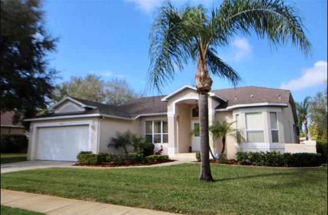1049 Sawgrass Drive, Tarpon Springs, FL 34689 (MLS #T3157437) :: Team Virgadamo
