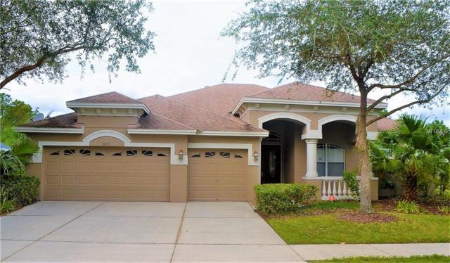 6615 Thornton Palms Drive, Tampa, FL 33647 (MLS #T3157514) :: Dalton Wade Real Estate Group