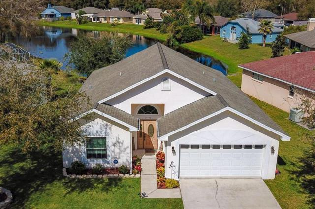 24458 Painter Drive, Land O Lakes, FL 34639 (MLS #T3157531) :: RE/MAX CHAMPIONS
