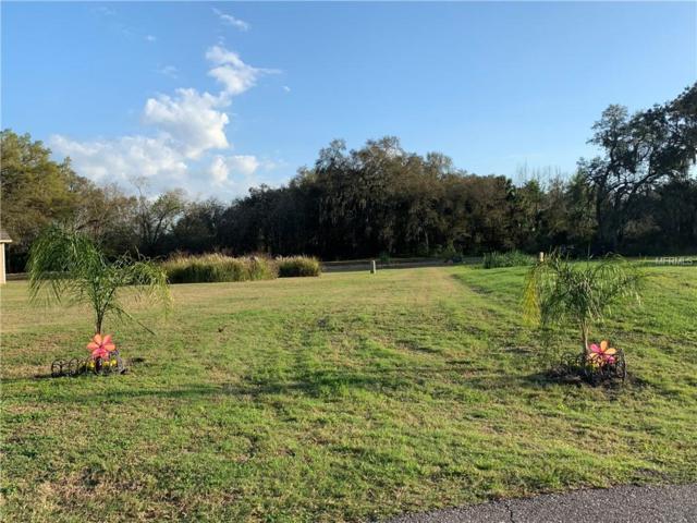 3017 Beautiful Creek Lane, Plant City, FL 33565 (MLS #T3157533) :: The Brenda Wade Team