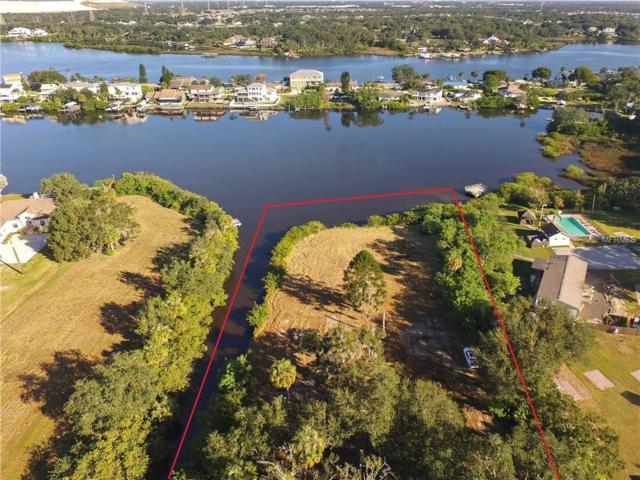 8510 Gibsonton Drive, Gibsonton, FL 33534 (MLS #T3157578) :: Griffin Group
