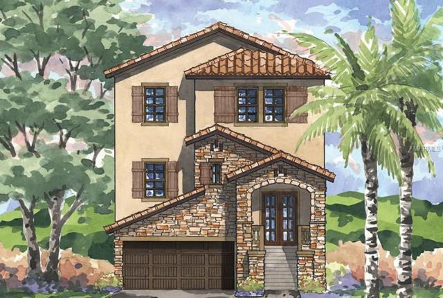 1515 Marinella Drive, Palm Harbor, FL 34683 (MLS #T3157612) :: Team Virgadamo