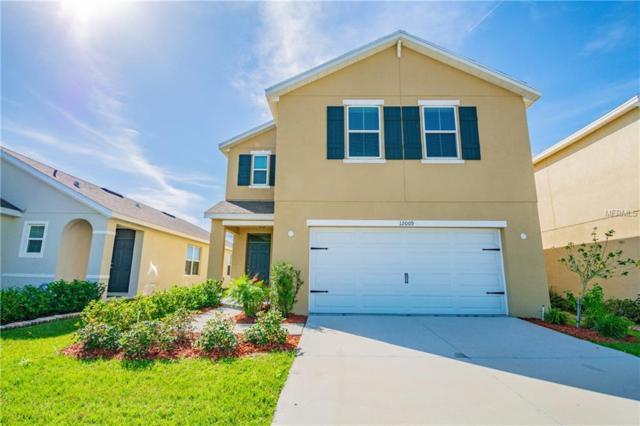 12009 Suburban Sunrise Street, Riverview, FL 33578 (MLS #T3157614) :: Team Bohannon Keller Williams, Tampa Properties