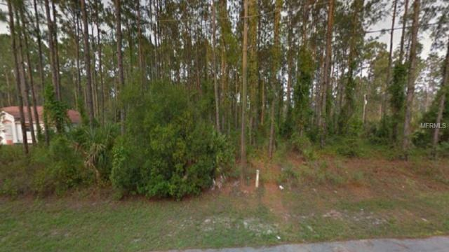 17 Reidel Lane, Palm Coast, FL 32164 (MLS #T3157640) :: The Duncan Duo Team
