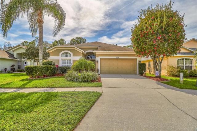 14418 Pepperpine Drive, Tampa, FL 33626 (MLS #T3157657) :: Cartwright Realty