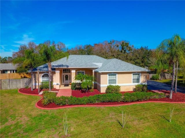 11902 Shadow Run Boulevard, Riverview, FL 33569 (MLS #T3157680) :: Team Bohannon Keller Williams, Tampa Properties