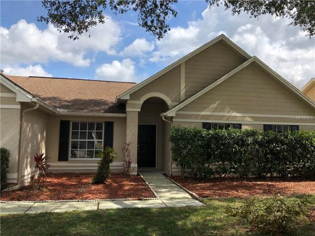 18546 Otterwood Avenue, Tampa, FL 33647 (MLS #T3157684) :: Team Bohannon Keller Williams, Tampa Properties