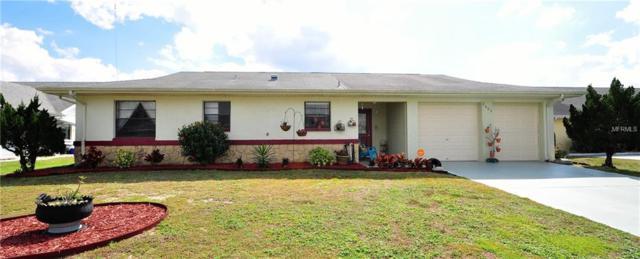 2003 N Pebble Beach Boulevard, Sun City Center, FL 33573 (MLS #T3157692) :: Dalton Wade Real Estate Group