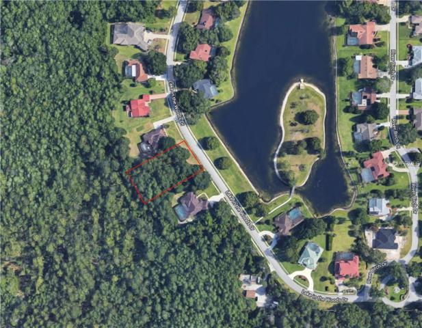 4453 Lake In The Woods Drive, Spring Hill, FL 34607 (MLS #T3157699) :: NewHomePrograms.com LLC