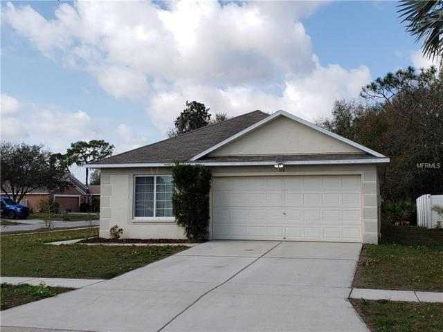 11811 Lynmoor Drive, Riverview, FL 33579 (MLS #T3157704) :: Team Bohannon Keller Williams, Tampa Properties