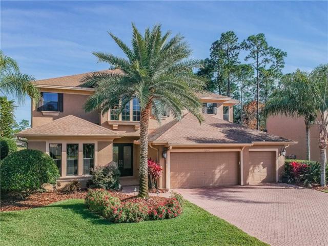 12916 Red Cardinal Drive, Odessa, FL 33556 (MLS #T3157720) :: RE/MAX CHAMPIONS