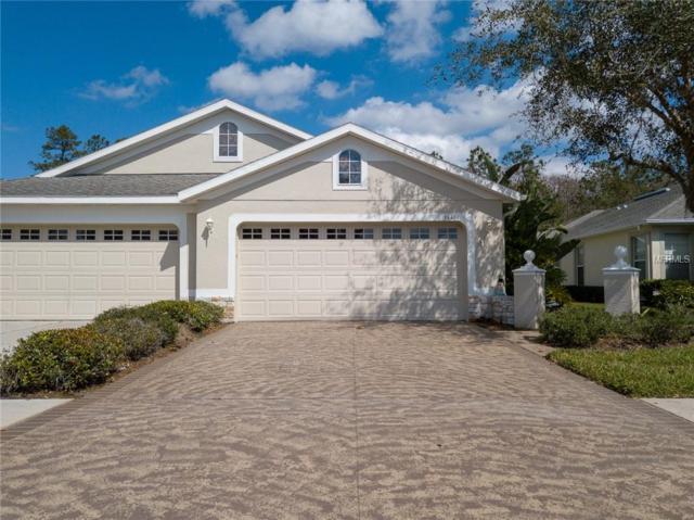 3446 Chapel Creek Circle, Wesley Chapel, FL 33544 (MLS #T3157727) :: Team Bohannon Keller Williams, Tampa Properties