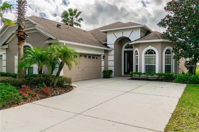 20642 Amanda Oak Court, Land O Lakes, FL 34638 (MLS #T3157795) :: Advanta Realty