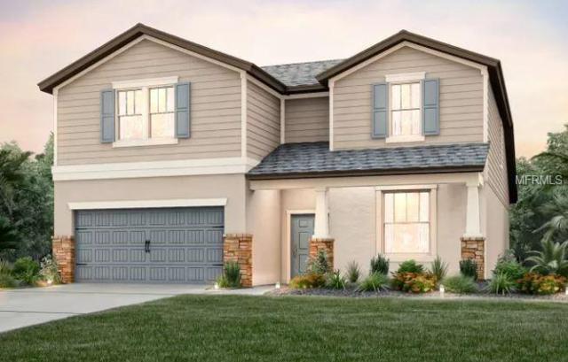 18920 Willowmore Cedar Drive, Lutz, FL 33558 (MLS #T3157842) :: Andrew Cherry & Company