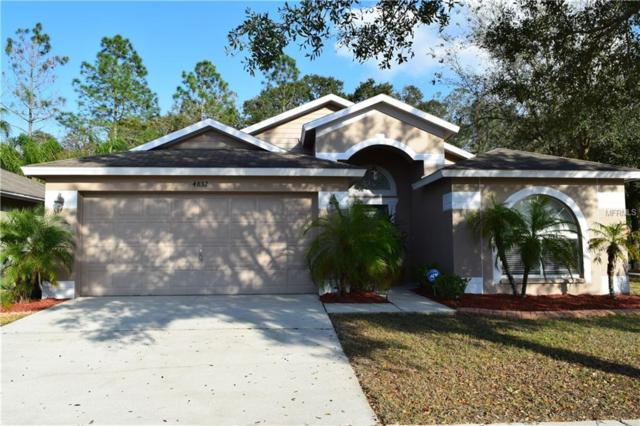 4832 Copper Canyon Boulevard, Valrico, FL 33594 (MLS #T3157878) :: Dalton Wade Real Estate Group