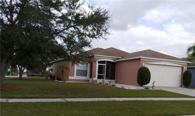 10210 Buffington Lane, Riverview, FL 33579 (MLS #T3157889) :: Baird Realty Group