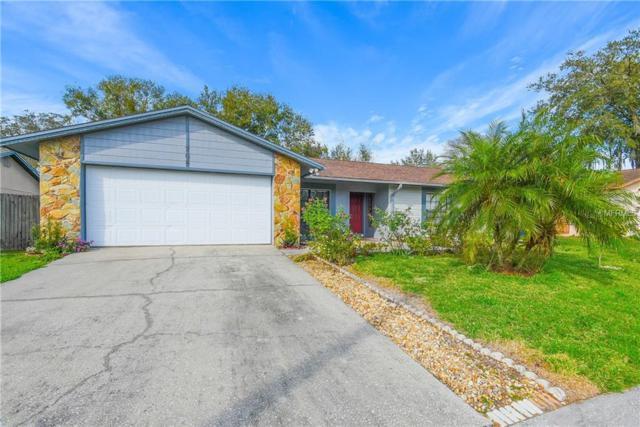 704 Caliente Drive, Brandon, FL 33511 (MLS #T3157905) :: Welcome Home Florida Team