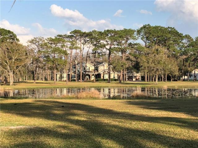6332 Wisteria Loop, Land O Lakes, FL 34638 (MLS #T3157921) :: Team Bohannon Keller Williams, Tampa Properties